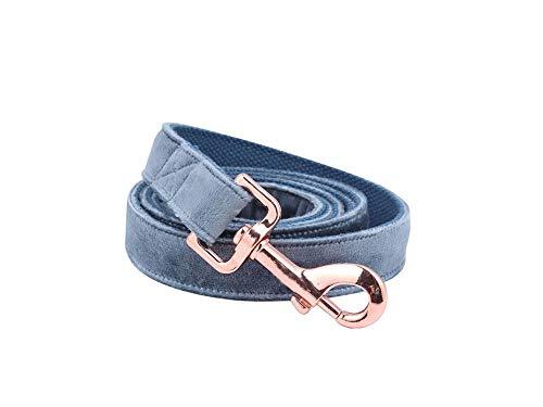 Solardream Weihnachtshundehalsband und Leine Set Designer Blue Velvet Einstellbare Hundehalsband für großen Hund, Leine, XL