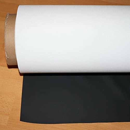 Beamerleinwand - in verschiedenen Größen Profi Leinwandtuch, Beamer Leinwandstoff, Leinwand für Beamer, Präsentationsleinwand Rolloleinwand, Projektionsleinwand, Heimkino, Kinoleinwand (200 x 320 cm)