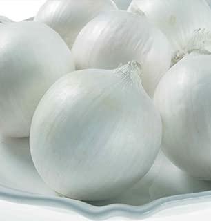 David's Garden Seeds Onion White Castle SL3085 (White) 200 Non-GMO, Hybrid Seeds