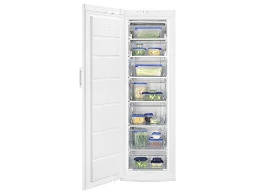 Congélateur armoire FU AN 28 FW