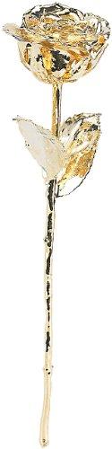St. Leonhard Goldene Rose: Echte Rose für Immer schön, mit 24-karätigem* Gelbgold veredelt, 28 cm (Echt Gold Rose)