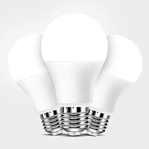 Full Spectrum Light Bulb