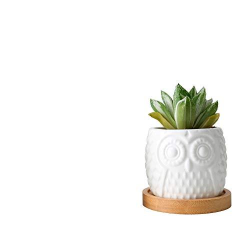 Mryishao Pot de Fleurs Maison Ceramic Succulent Flowerpot White Owl Flowerpots with Bamboo Tray Holder Cute Cactus Flower Pots Bonsai Planters Desktop