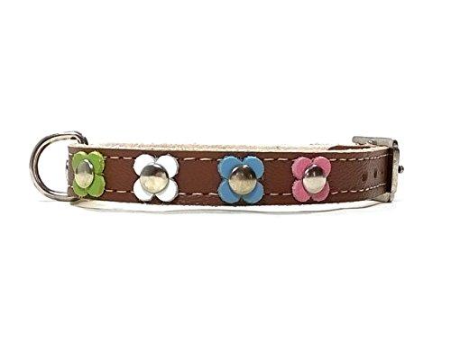 Superpipapo Hunde-Halsband, Handmade Braun Leder für Welpen, Chihuahuas und Kleine Hunde, Vintage Design Floral mit Bunt Pastel Farbige Blumen, 30 cm XXS: Halsumfang 20-25 cm, Breit 13mm