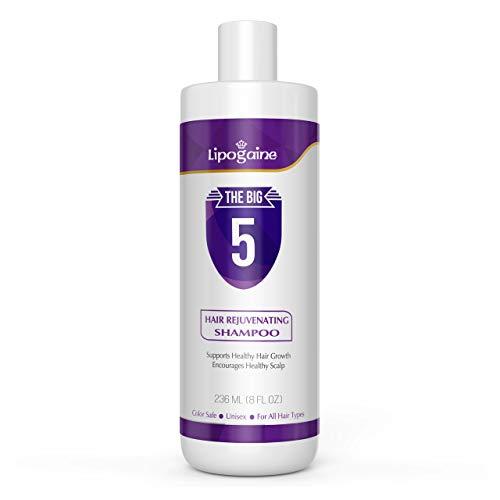 Lipogaine Big 5 Hair Stimulating All Natural Shampoo for Hair Thinning & Breakage (purple) (16oz)