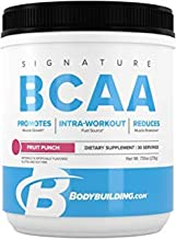 Bodybuilding Signature BCAA Powder | Essential Amino Acids | Nutrition Supplement | Promote Muscle Growth and Recovery | 30 Servings, Fruit Punch