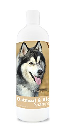 Healthy Breeds Dog Oatmeal Shampoo with Aloe for Siberian Husky - Over 75 Breeds – 16 oz - Mild and Gentle for Itchy, Scaling, Sensitive Skin – Hypoallergenic Formula and pH Balanced
