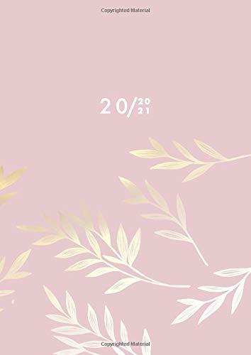 Agenda 2020 2021 Giornaliera A4: Agenda 12 Mesi, Due Pagine per Giorno, 21x29,7 cm, Luglio 2020 - Giugno 2021, Agenda professionale 2020/2021
