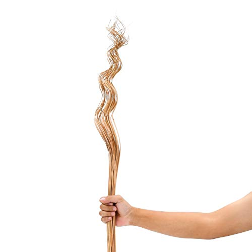 Leewadee racimo girado para florero de Suelo – 40 Ramas largas y Sueltas, Ramo Decorativo para adornar viviendas o restaurantes, 105 cm, Color Natural