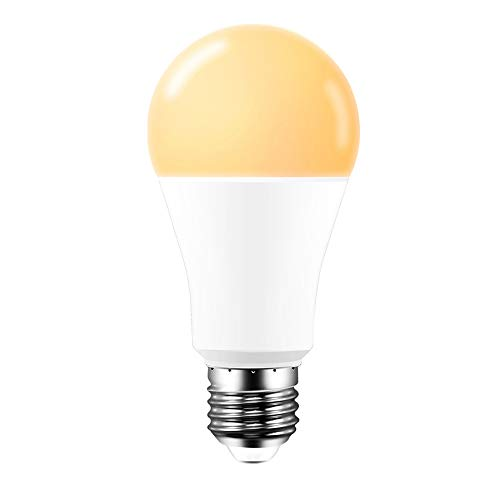 Lampadina WiFi intelligente Lampadine E27 Lampadina intelligente super luminosa Lampadina dimmerabile 15W Lavora con Amazon Alexa/Google Home (E27 warm white)