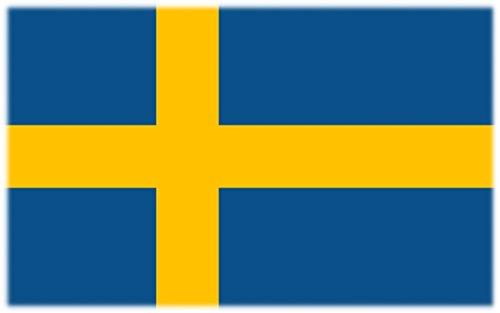 Wuerfel24 Flagge/Fahne Tattoo SCHWEDEN - 2 Paar (4 Stück) - Nicht permanent - für Gesicht, Wange, Schulter, Arm, Hand
