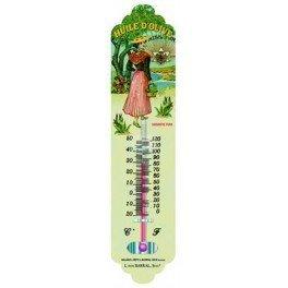 Cartexpo TT727 Alimentation Thermomètre Huile d'olive Pure Métal