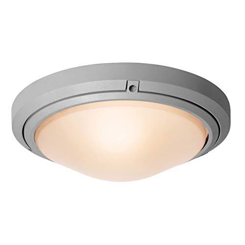 "Access Lighting 20356LEDDMGLP-SAT/FST Oceanus - 15.75"" 17W 1 LED Outdoor Flush/Wall Mount, Choose Lamping Option: A-19 E-26 LED"