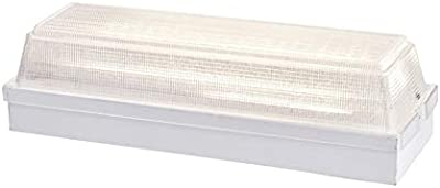 Amazon.com: Saunter T4 fluorescente 22-watt ~ 4100 K 29 ...