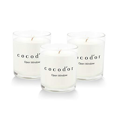 Cocod'or Premium Jar Scented Candles / Open Window / 3 Pack / 30-40 Hour Extended Burn Time, Made in Italy