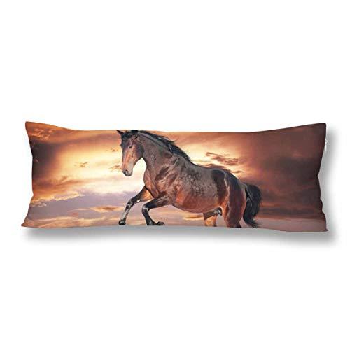CiCiDi Seitenschläferkissen Kissen-Bezug 40x145 cm Brown Pferd, das dunklen Himmel läuft Atmungsaktives Kissenhüllen mit Reißverschluss Baumwollen und Polyester