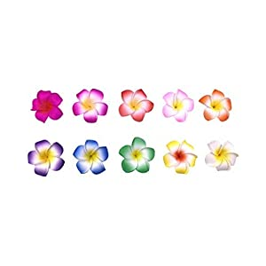 11cm/4.33 inch 10 Color 30pcs Plumeria Artificial Flower Frangipani Water Floating Plumeria Artificial Flower Frangipani for Pool Decoration and Bathtub (Flower Dia: 11cm/4.33 inch, 02)