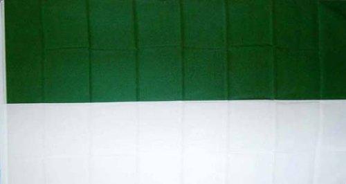 Flagge Fahne Schützenfest Grün/Weiss 90x150cm
