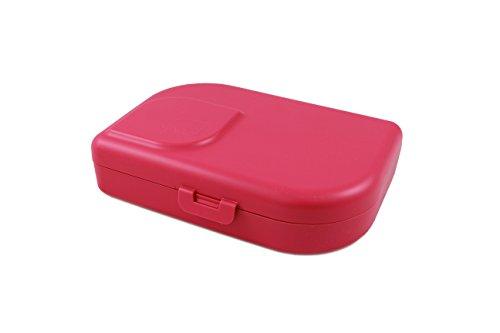 ajaa! Bio BROTBOX - Lunch-Box aus nachwachsenden Rohstoffen ohne Weichmacher, plastikfrei, BPA frei (pink)