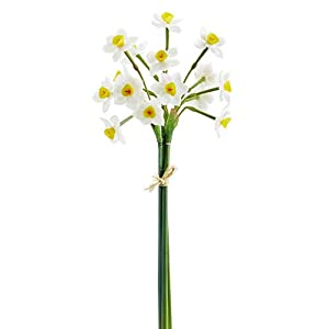 20″ Narcissus Daffodil Silk Flower Stem Bundle -White/Yellow (Pack of 12)