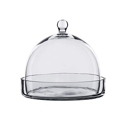 CYS EXCEL Bell Dome Cloche with Glass Base (H:7.5
