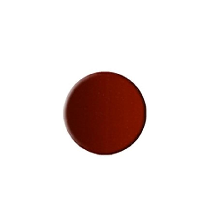 中絶好きである踏みつけ(3 Pack) KLEANCOLOR Everlasting Lipstick - Chocolate (並行輸入品)
