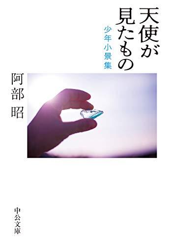 天使が見たもの-少年小景集 (中公文庫)