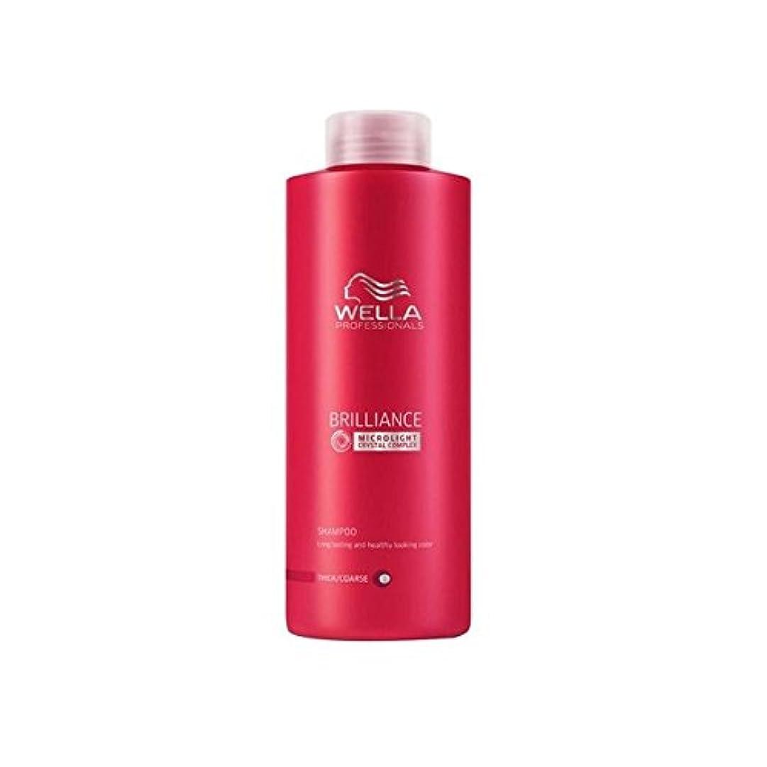 苦全国打ち上げるWella Professionals Brilliance Coarse Shampoo (1000ml) - ウェラの専門家は粗いシャンプー(千ミリリットル)をブリリアンス [並行輸入品]