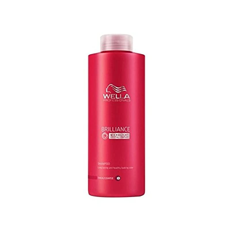 関係裁定最愛のWella Professionals Brilliance Coarse Shampoo (1000ml) (Pack of 6) - ウェラの専門家は粗いシャンプー(千ミリリットル)をブリリアンス x6 [並行輸入品]
