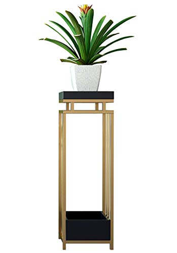 YOUdaoA Rez-de Nordic Light Porte Salon postmodernes de création d'or INS Simples Vent en Bois Massif jardinière de Fer (Size : 100cm)