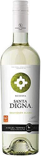 Sauvignon Blanc Santa Digna Reserva - 2020 - Miguel Torres