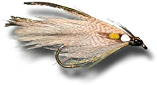 grey ghost fly
