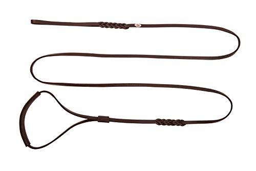 Dingo Ausstellungsleine aus weichem Leder mit geflochtenem Griff, 10mmx250cm, Braun