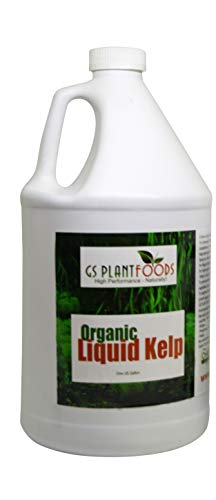 GS Plant Foods Organic Liquid Kelp Plant Fertilizer (1 Gallon) | Omri Organic Listed Seaweed & Kelp Fertilizer Solution | Kelp Seaweed Plant & Vegetable Growth Concentrate for Gardens, Lawns & Soil