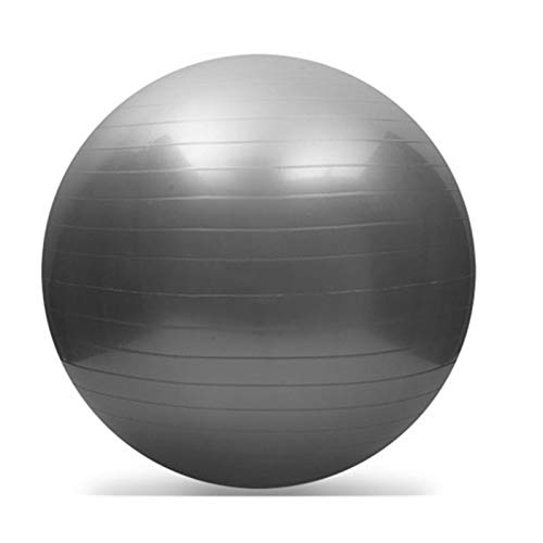 hgkl Pelota Pilates Pelota de Yoga Pilates Fitness Balance Bola Gimnasia Embarazada Mujer Fildesto Ejercicio Fitness Midfiliar PVC Bola (Color : Silver 55 CM)