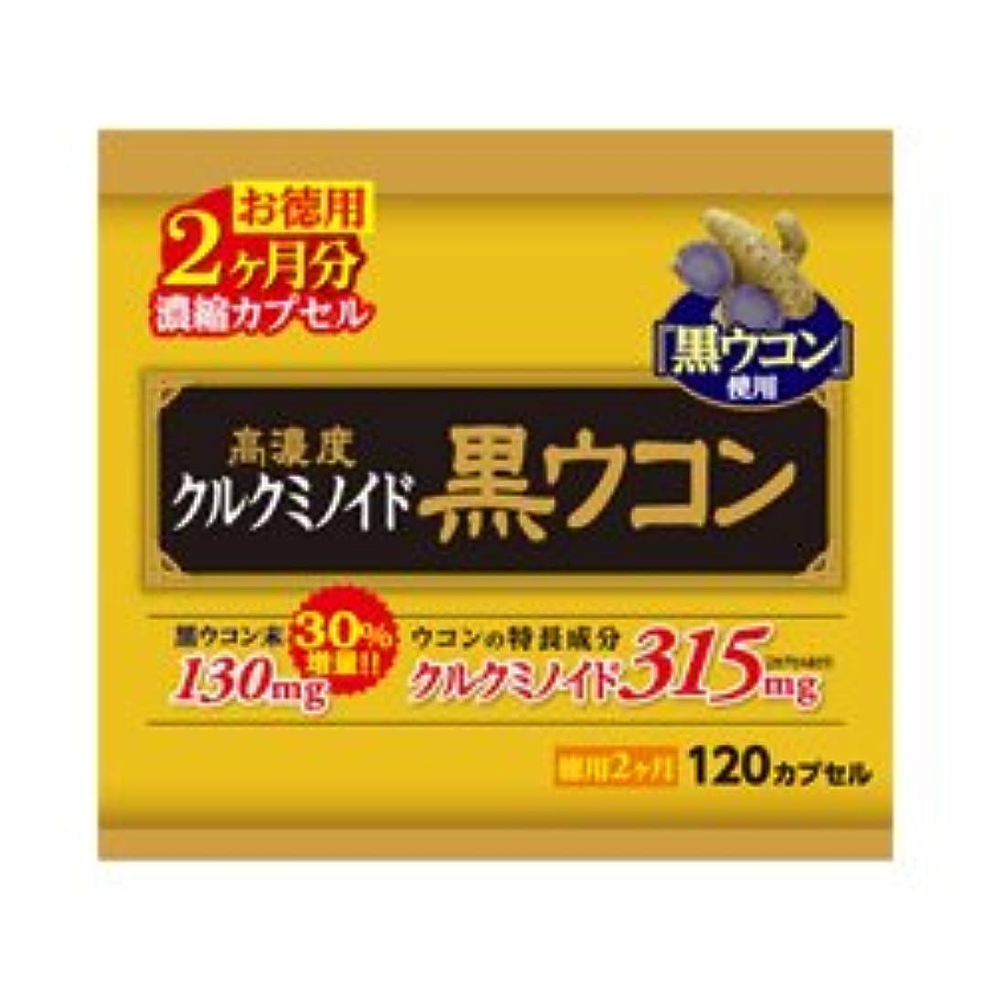 人気のぞき穴染料【ウエルネスジャパン】高濃度 黒ウコン 徳用 約60日分 120カプセル ×5個セット
