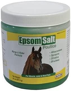 Dover Saddlery Durvet Epsom Salt Poultice Jar - 20 oz