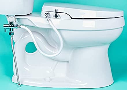 Best Bidet Toilet Seats You Ll Be Happy To Sit On In 2020 Swankyden Com