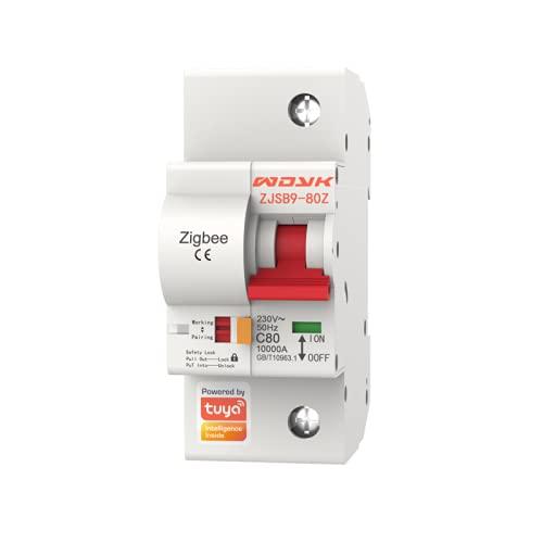 Jiudong Interruptor de circuito inteligente-1P-220V Plug-in interruptor inteligente WIFI inalámbrico Control remoto IoT, funciona con Alexa/Google home