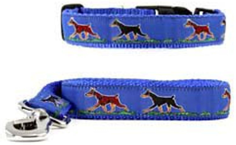 Doberman Pinscher Collar & Leash