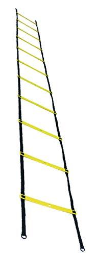 Lisaro Koordinationsleiter (6 Meter)