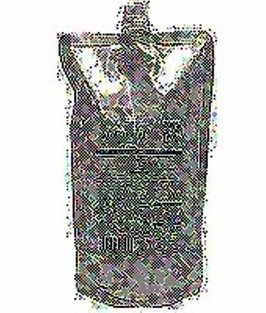 同種のくそー観点【X2個セット】 ルベルコスメティックス ルベル プロエディット ヘアスキン スプラッシュリラクシング 360g