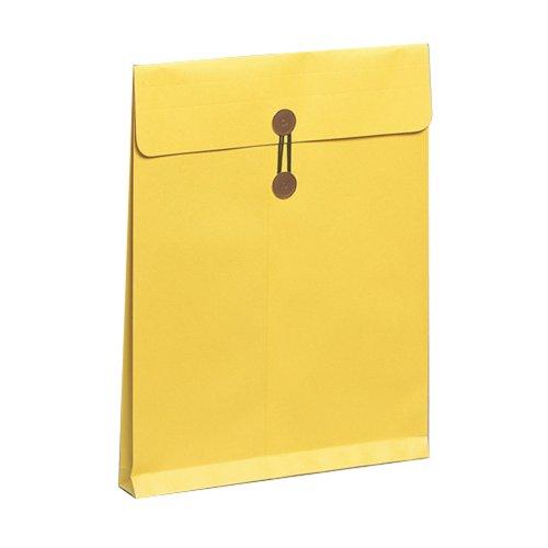 マルアイ 封筒 保存袋 ハード 角0 マチ付 10枚 H-50×10P