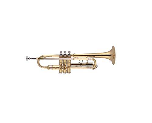 J. Michael TR200 - Trompeta en SI bemol, lacada
