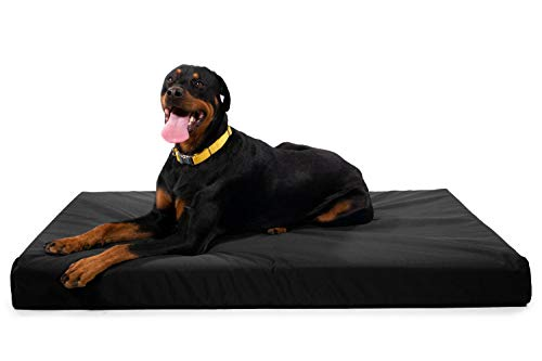 K9 Ballistics Tough Orthopedic Dog Bed X-Large Nearly Indestructible & Chew Proof, Washable Ortho Pillow for Chewing Puppy - for X-Large Dogs 54'x38', Black