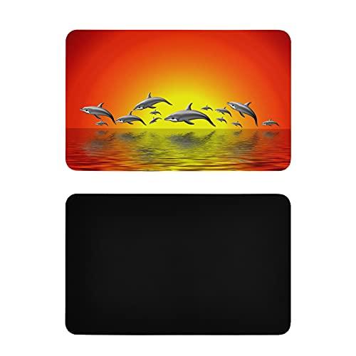 Imanes Cuadrados Lindos para Nevera Delfines saltadores Imanes de Cocina Imanes Personalizados de PVC para frigorífico Accesorios Divertidos de Cocina 4x2,5 Pulgadas