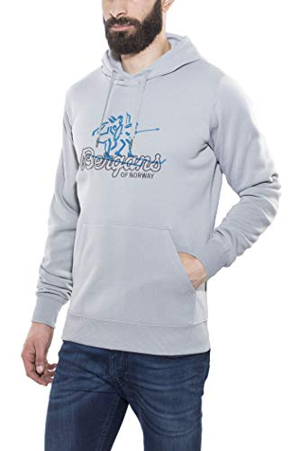 Bergans Hoodie - Sweat-shirt Homme - gris Modèle S 2017 sweatshirt