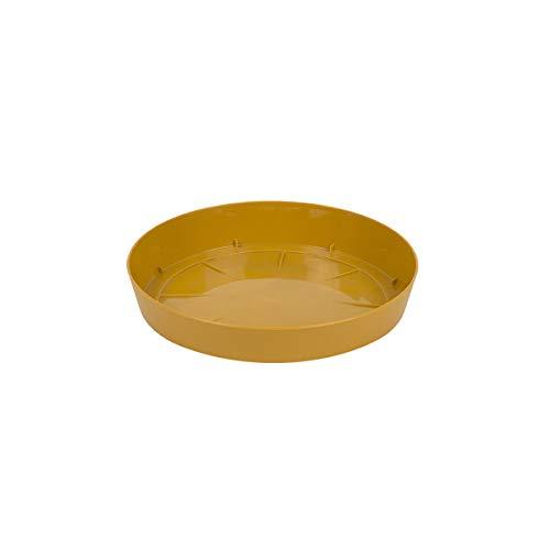 myBoxshop Soucoupe pour Pot de Fleurs Marron Clair Ø 10,5 cm