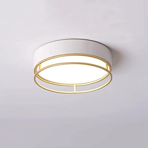 LXIANG Lámparas de techo para pasillos, entrada para balcones, lámparas de techo para pasillos, guardarropas, terrazas para salas de almacenamiento y otras lámparas de área pequeña, luces LED de insta