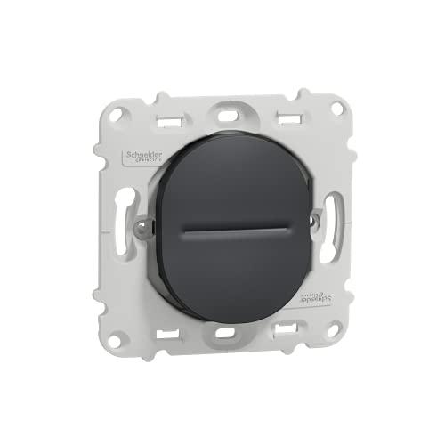 Ovalis – va y viene – 10AX – Fix por tornillo – Sin placa de acabado, antracita